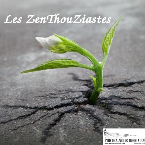 Les Z'EnThouZiastes